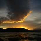 tassie sunset. australia by tim buckley | bodhiimages