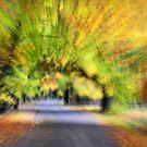 Impressions of autumn #2 by Geraldine Lefoe