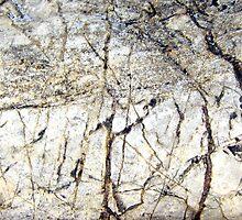Winter Snowscape by Kathie Nichols