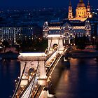 Chain Bridge and the Danube by Night by Cliff Williams