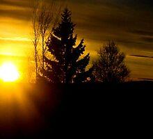 Good morning sunshine by missmoneypenny