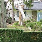More Damage In Niagara-On-The-Lake by artwhiz47