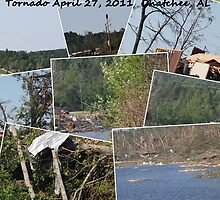 Devastation April 27, 2011 part 2 by Charldia