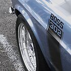 Ford Boss Mustang 302 2 by MattMcilwhan