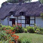 Cottage garden, Stratford-upon-Avon, UK by johnrf