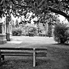 The Anglican Bench by Jane Keats