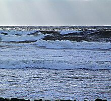 Lawrencetown Beach, Stormy Day by Jann Ashworth