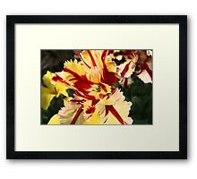 Puddle card's, Art in a Puddle card collection Framed Print