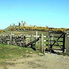 Dunstanburgh Castle by Alison Ward