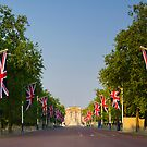 UK, England, London, Buckingham Palace, Royal Wedding by Alan Copson