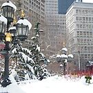 NY December City Hall Park, Snow View, New York by lenspiro