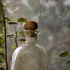 Bottle in the window by SolanoPhoto