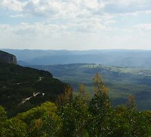 Blue Mountains Valley View by Alison Murphy