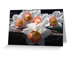 Beautiful Ladies Of Spring Greeting Card