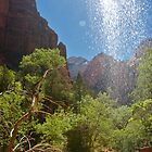 Through the Waterfall at Zion by Michael Irrera