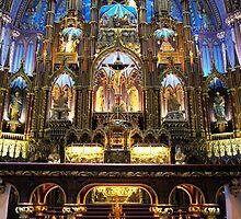 Notre Dame by Sheri Bawtinheimer