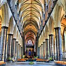 Salisbury Cathedral by Cat Perkinton