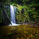 Marriners Falls, Great Otway National Park by Jason Asher