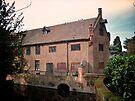 Tudor Barn, Well Hall Pleasaunce by Lisa Hafey