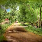 Paech Road - Paechtown, Hahndorf, South Australia by Mark Richards