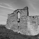 Tutbury Castle 2 by Mike Topley