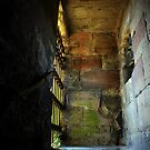 Tutbury Castle 3 by Mike Topley