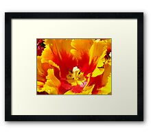 Yellow Red Tulip Flower art prints Floral Baslee Troutman Framed Print