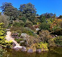 Rock Garden cascade in Mt Tomah by StuartR