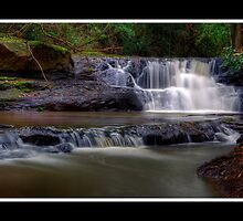 Condamine River by Stephen Bird
