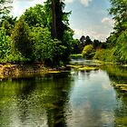 The Lake At Kew Gardens by John Hare