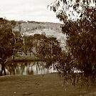 """""""down by a billabong, under the shade of a coolibah tree..."""" by Glynn Jackson"""