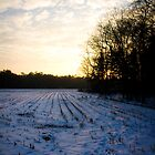 Footprints in the snow - Sunset by Daniel Berends