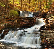 Cascading Waterfall in Autumn. by jaymudaliar