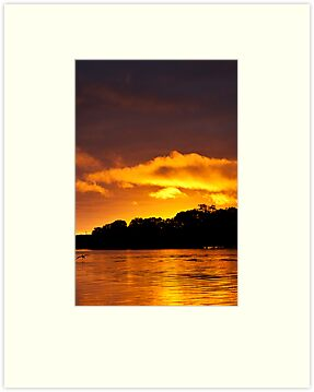 Golden Sunrise by Dave  Hartley