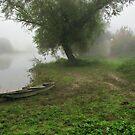 Waiting In The Mist by Marina Herceg