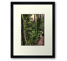 lewis and clark trail Framed Print