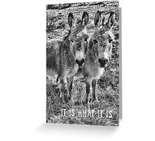 It IS What It IS - BW Print Poster Greeting Card