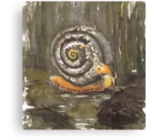 Fibonacci's snail  Canvas Print