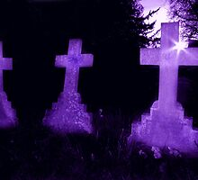 Purple Crosses by Samantha Higgs