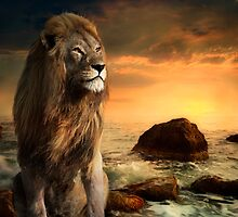 The Lion of Judah by phatpuppy