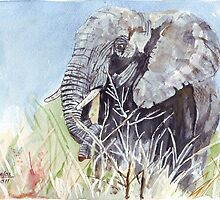"Calendar ""South African Wildlife"" by Maree  Clarkson"