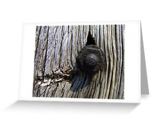 Rusty bolt in wood Greeting Card