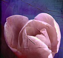 Painted tulip by Olga