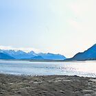 Chilkat River Panorama by Yukondick
