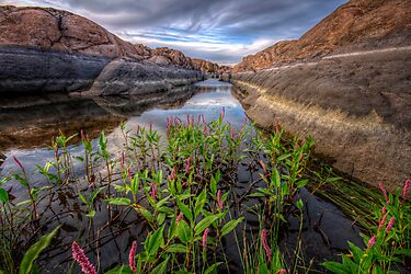 Bloom in the Rock Canal-Wide by Bob Larson