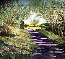 """""""Land of the Summer People"""" - The Somerset Levels by Timothy Smith"""