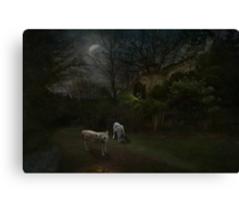 Feed your imagination Canvas Print