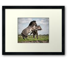 Fair and Honest Framed Print