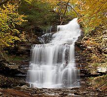 Ganoga Falls (Autumn) by Tim Devine