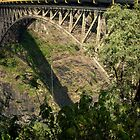 Bungee Jumping at Victoria Falls bridge, Zimbabwe by Margaret  Hyde